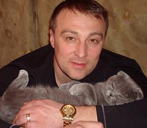 Шотландская вислоухая кошка, Скоттиш фолд окрас: Голубой, Y.Katalina Super Fold